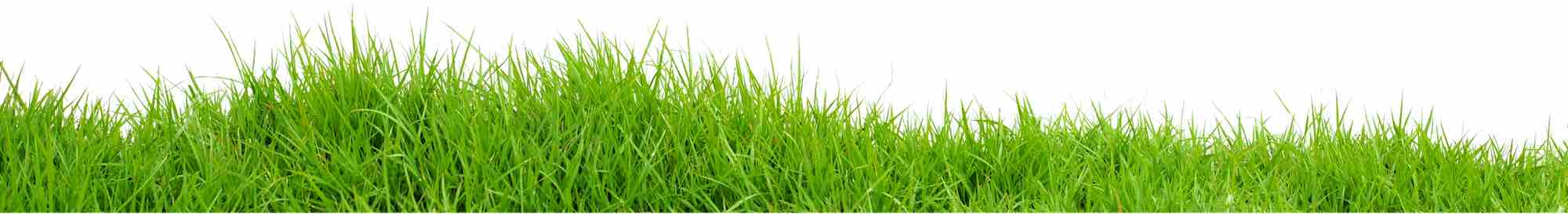 lawn products supplier